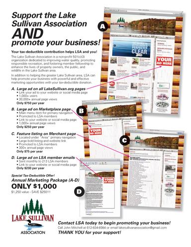 LSA-Sponsor-Program